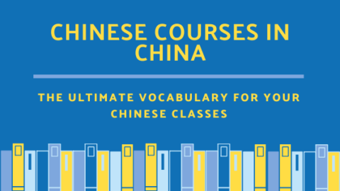 chinese courses in china vocabulary (1)