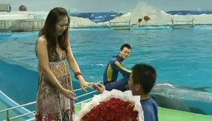 Dolphin For Wedding Proposal To Girlfriend In China 1